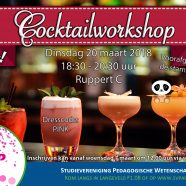 Cocktailworkshop!